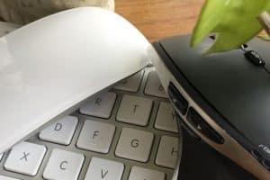 Pourquoi ma souris sans fil ne fonctionne-t-elle pas?